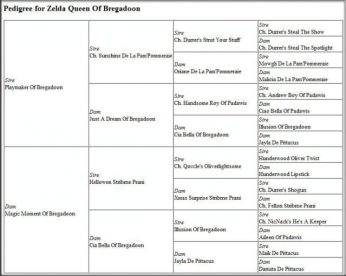 oki-square-zelda-queen-of-bregadoon-pedigree